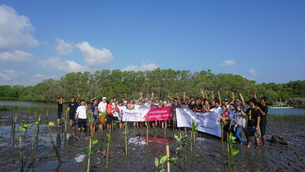 Mangrove Planatation 2